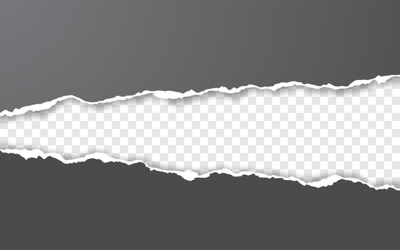 Horizontal torn paper edge. Ripped squared horizontal white paper strips. Vector illustration