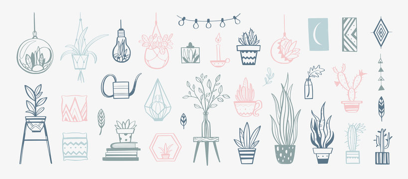 Cozy interior decor Vector elements . Hand drawn house plants and decorations for home