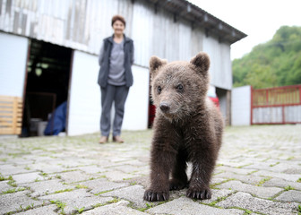 "Zakir Becar's mother Sija stands behind an orphaned baby bear named ""Aida"" in front of his house in Gunjani village near Sarajevo"