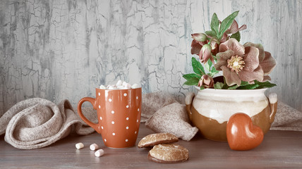 Wintertime, hot chocolate with marshallows, anemone flowers, heart and winter decorations