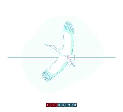 Continuous line drawing of stork. Template for your design works. Vector illustration.