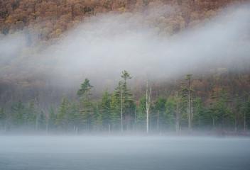 View of fog over Labrador Pond