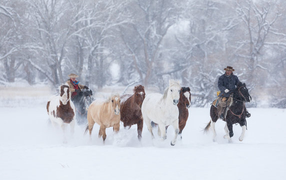 Couple riding horse during winter
