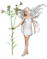 Fantasy illustration of a pretty fairy with white Star of Bethlehem flowers, 3d digitally rendered illustration
