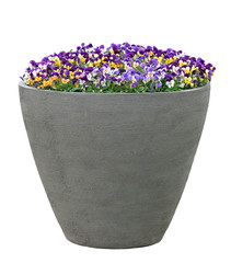 Fototapeta Large Planter With Flowers Isolated On White obraz