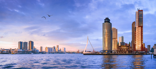 City Landscape, panorama - view on Erasmus Bridge and district Feijenoord city of Rotterdam, The Netherlands, banner