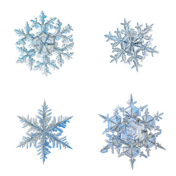 Four snowflakes isolated on white background. Macro photo of real snow crystals: elegant stellar dendrites with ornate shapes, fine hexagonal symmetry, glossy relief surface and complex inner details.