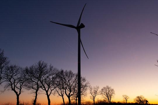 wind turbine and trees