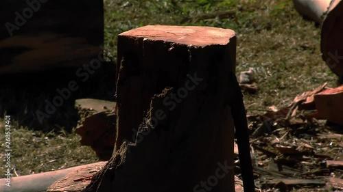 esikatselu hyvä myynti mahtavat hinnat Woman Chopping Wood with Axe. Original Sound Included ...