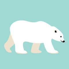 polar bear , vector illustration,flat style,profile