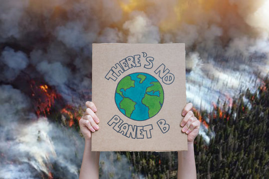 Climate change manifestation poster on a forest burning background: there is no planet b. Deforestation, fire and destruction concepts