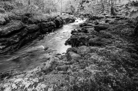 The river Taf in black and white