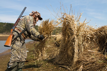 duck hunter builds a hunting blind of reeds
