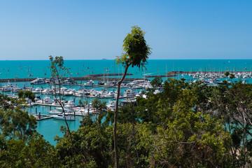 Blick über Bäume auf einen Yacht-Hafen