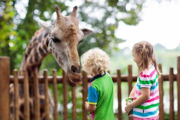 Kids feed giraffe at zoo. Children at safari park. Fototapete