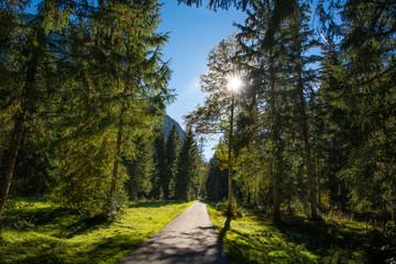 Wall Mural - Weg im Karwendel Gebirge in Tirol / Österreich