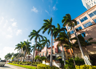 Palm trees and elegant buildings in West Palm Beach