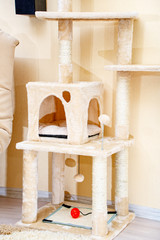 Cute funny cat tree in the living  room with scratcher.
