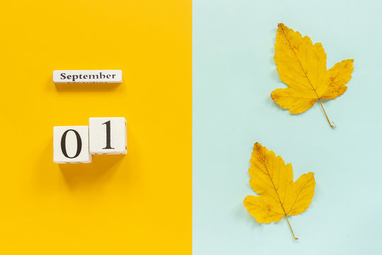 Autumn composition. Wooden calendar September 1 and yellow autumn leaves on yellow blue background. Top view Flat lay Mockup Concept Hello September