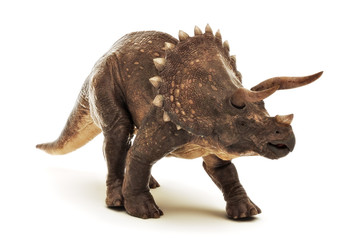 Triceratops Jurassic dinosaur reptile on a white background. 3d rendering
