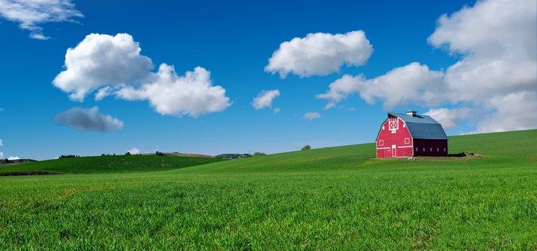 Red barn in a green field of winter when Eastern Washington