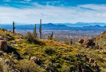 Door stickers Arizona Hiker on Pinnacle Peak Desert Trail In Scottsdale