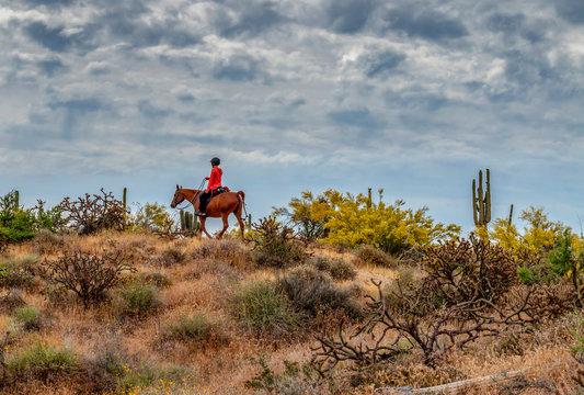 Women Riding Horse In the Arizona Desert