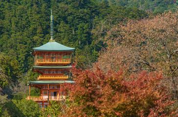 Fototapete - Scenic view of pagoda of Seiganto-ji Temple at Nachi Katsuura, Wakayama, Japan