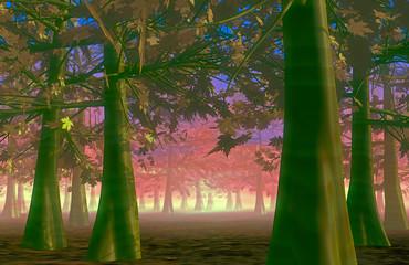 Autumn forest scene • Sunset forest