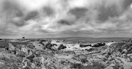 scenic beach landscape with rocks at Pebble Beach, California