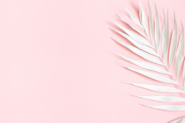 Summer composition. White tropical palm leaf on pink background. Summer concept. Flat lay, top view, copy space