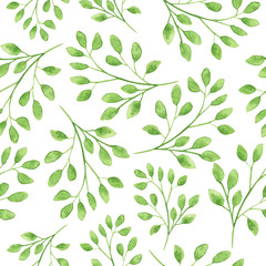 Watercolor seamless pattern with floral twigs. Hand drawn green leaves isolated on white background