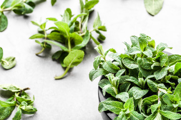 Green organic mint leaves or peppermint, fresh mint on white background
