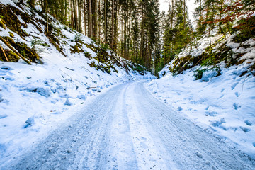 old country road in winter
