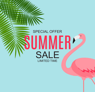 Summer Sale concept with Colorful Cartoon Pink Flamingo Background. Vector Illustration