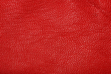 Garden Poster Leder Texture of red leather rumpled