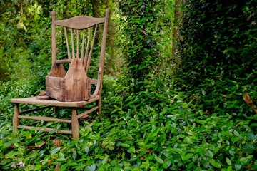 Old wooden toolbox and chair in the garden