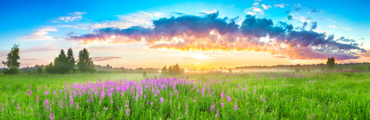 panorama rural landscape with sunrise  and  blossoming meadow Fototapete