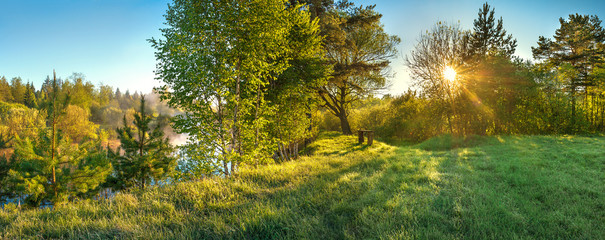 panorama landscape with sun and forest and meadow