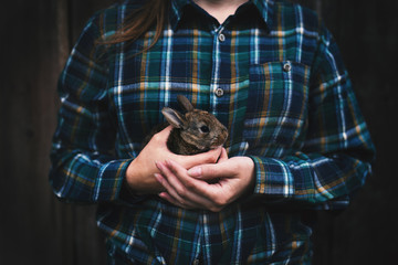 Young woman holding a small, cute bunny. Farmer holding rabbit. Concept of farm and animals.