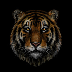 Color, graphic, hand-drawn portrait of a tiger looking ahead on a black background.