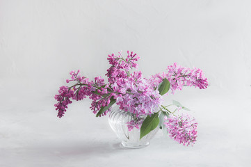 Photo sur Toile Lilac Bouquets of lilac on a white background in glass vases
