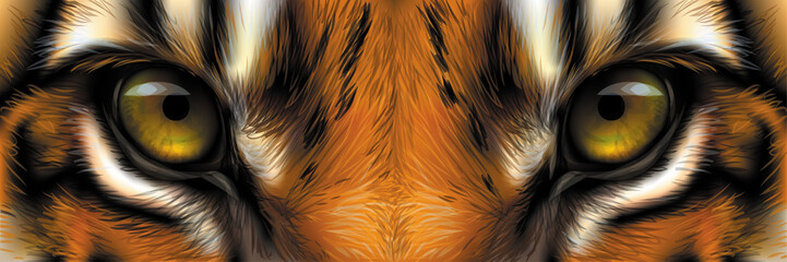 Big eyes. Eyes of a red tiger close up. Wall mural