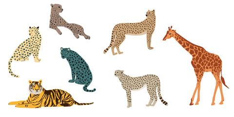 Leopards, tiger, cheetah and giraffe