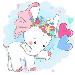 Cute white baby elephant