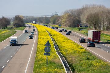 Dutch motorway near Lelystad with blooming rapeseed