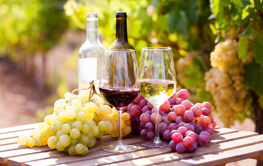 Foto op Aluminium Wijn glasses of red and white wine and ripe grapes on table in vineyard