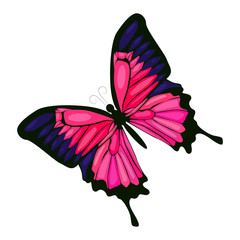 Pink butterfly vector icon on a white background. Insect illustration isolated on white. Decorative butterfly realistic style design, designed for web and app. Eps 10.