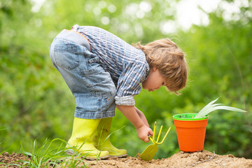 Garden. Sweet gardener. Boy digs the ground in the garden. Children and nature. Eko bio organic concept. Healthy food and products. Harvest and Healthy Eating. Cute boy with garden equipment.