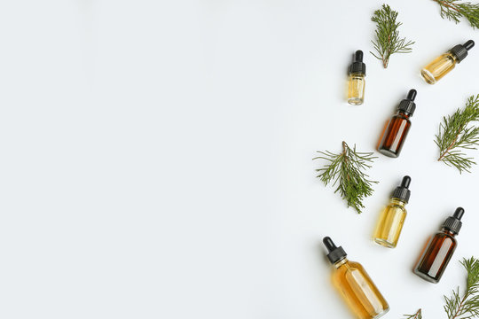 Little bottles with essential oils among pine branches on white background, flat lay. Space for text